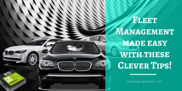 Fleet Management made easy with these Clever Tips!