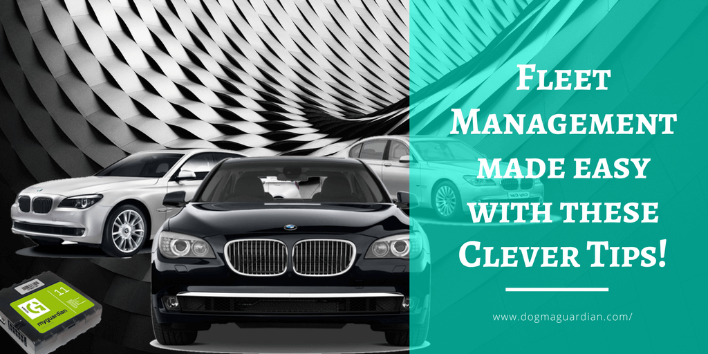 Fleet Management made easy